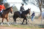 Image #DSC-8050<br />(This is a low resolution version of the original photo - Contact www.photosbysallyh.com.au to Purchase)