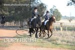 Image #DSC-8061<br />(This is a low resolution version of the original photo - Contact www.photosbysallyh.com.au to Purchase)