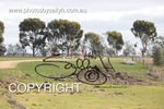 Image #DSC-8344<br />(This is a low resolution version of the original photo - Contact www.photosbysallyh.com.au to Purchase)